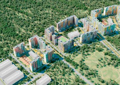 Проект «Большое Домодедово»